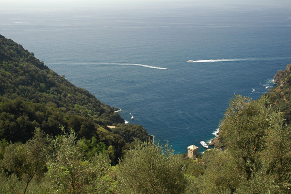 http://www.alpioccidentali.it/escursioni/images-esc/Camogli-SanFruttuoso_baia.JPG